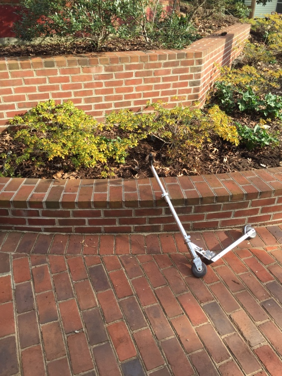 Scooter outside Dowd-Finch Hall